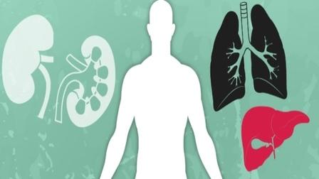 Organ donation is a gesture of generosity