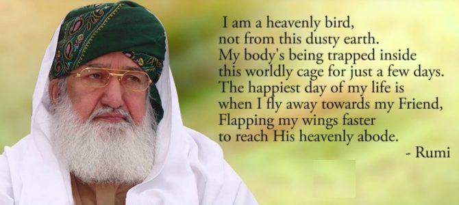 A tribute to Pir Alauddin Siddiqui (1938-2017)